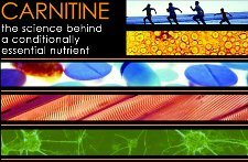 Carnitine conference logo
