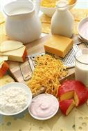 Milk, yogurt, and a variety of cheeses.