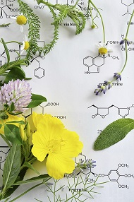 medicinal herbs/flowers and chemical formulas