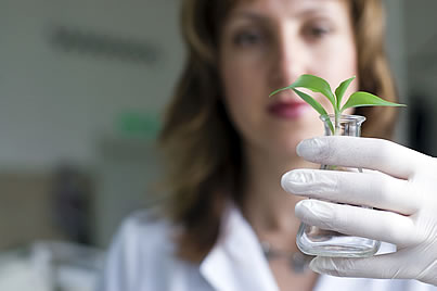 scientist with plant