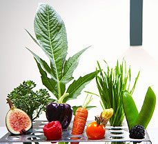 vegetables in test tube holder