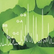 gingko leaf with HPLC curves overlay
